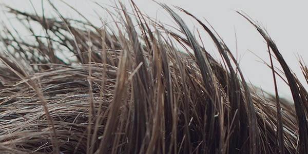 MAN ITSELF propose toute une gamme de produits homme pour prendre soin de vos cheveux