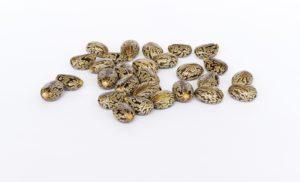 graines de ricin - MAN ITSELF - Spécialiste des produits de soin visage, rasage, corps, cheveux, bouche, accessoires et idées cadeaux homme